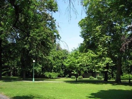 FOTKA - Královská zahrada u Letohrádku  Královny Anny  1