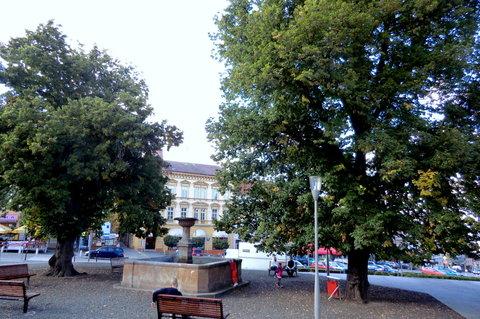 FOTKA - Kašna na náměstí