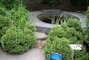 arboretum Bílá Lhota -12