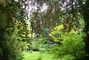 arboretum Bílá Lhota - 1