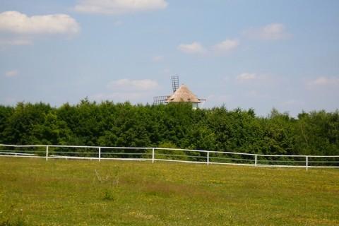 FOTKA - střecha mlýna