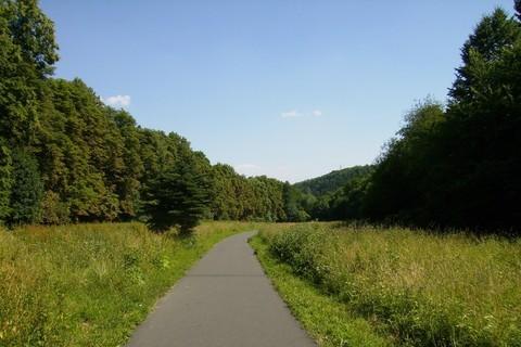FOTKA - cesta.