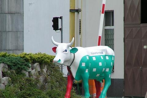 FOTKA - Barevná kráva před Polabskými mlékárnami v Poděbradech