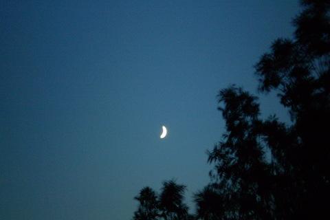 FOTKA - Měsíček