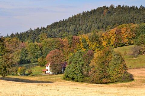FOTKA - Barevný podzim