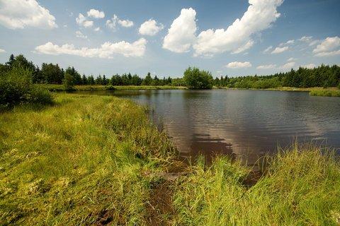 FOTKA - Rudolický rybník