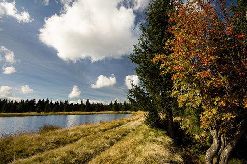 FOTKA - Novoveský rybník..