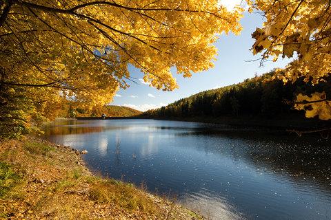 FOTKA - Podzim u Janovské přehrady