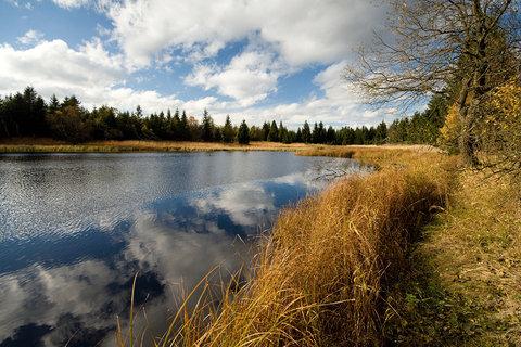 FOTKA - ...Černý rybník...