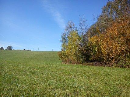 FOTKA - už se nám to barví do podzimu ...