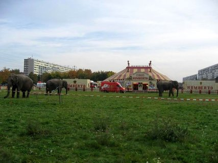 FOTKA - Střížkov na  podzim 11
