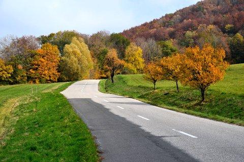 FOTKA - Cesta podzimem