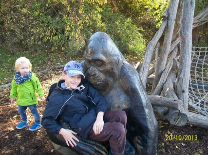 FOTKA - Domík a gorila říjen 2013
