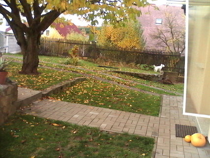 FOTKA - podzim prisel