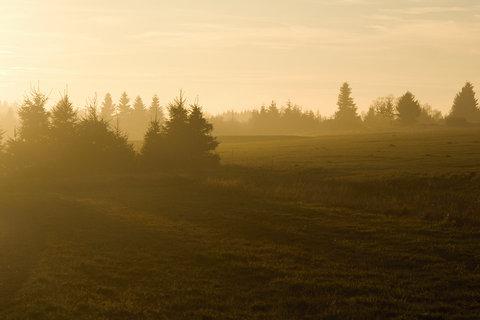 FOTKA - Večerní světlo