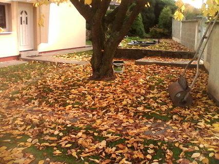 FOTKA - prichazi podzim