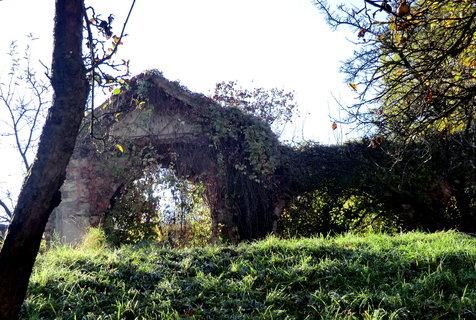 FOTKA - Zbytky hřbitova středověkého kláštera
