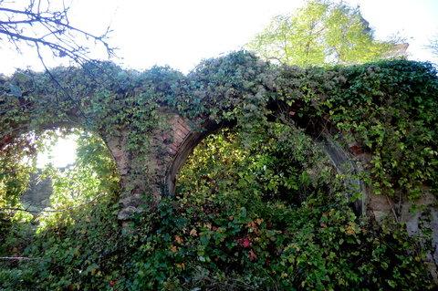FOTKA - Tajuplná místa v klášterní zahradě