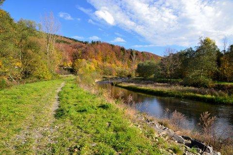 FOTKA - Podzim u řeky