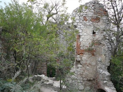 FOTKA - Pálava 65