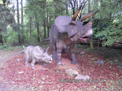 FOTKA - Návštěva DinoParku Vyškov 4