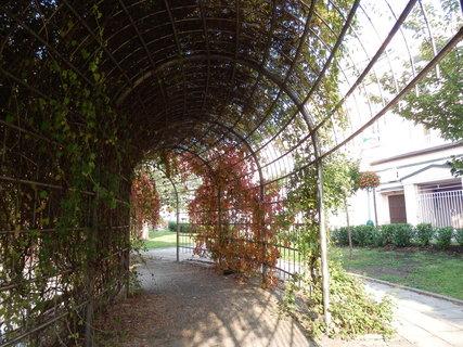 FOTKA - podzim v lázeňském parku (Teplice v Čechách)