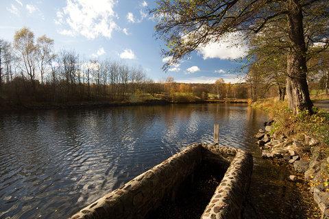 FOTKA - Rybník u Květnova