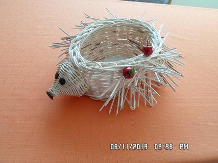 FOTKA - ježek 1