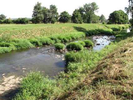 FOTKA - potok s travinou