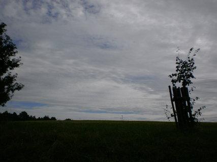 FOTKA - navečer