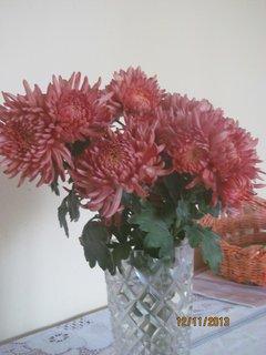 FOTKA - Chryzantémy ve váze
