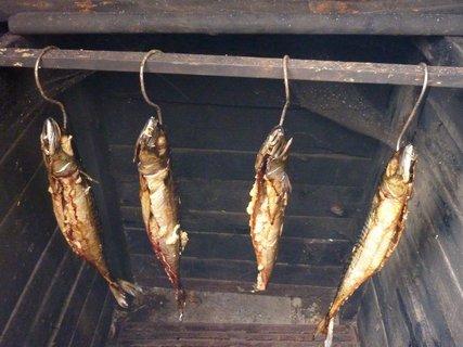 FOTKA - makrely v uďáku