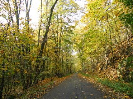FOTKA - Podzimní procházka 1