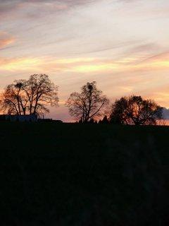 FOTKA - krásný večer