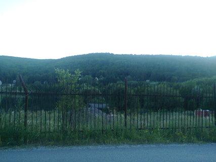 FOTKA - za plotom...