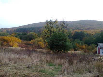 FOTKA - jesenná