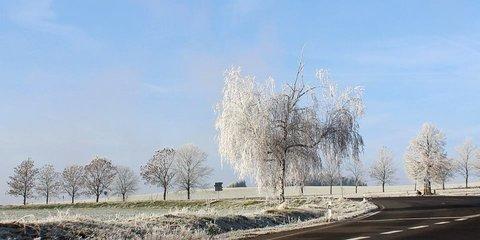 FOTKA - zima13