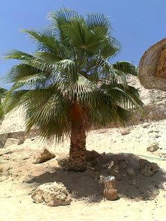 FOTKA - Hurghada 6