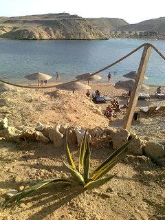 FOTKA - Hurghada 11