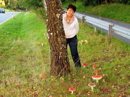 FOTKA - Vzpomínka na podzim....