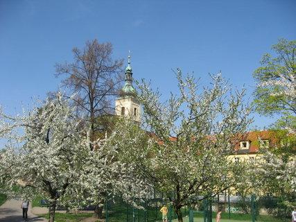 FOTKA - Na Petříně v dubnu 24