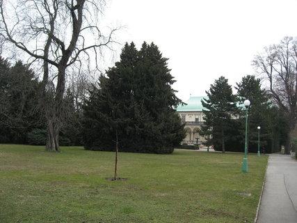 FOTKA - Královskou  zahradou 6