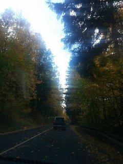 FOTKA - podzimní krajina5