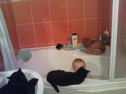 FOTKA - Kubík má u koupele společnost.