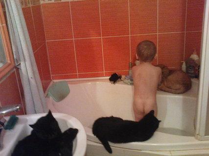 FOTKA - Kubík má u koupele společnost..