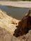 písek kolem  řeky Moravy nedaleko Hodonína