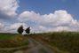 Krajina na Žďársku připomíná obrazy Ant.Slavíčka