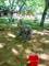 kačka na hřišti