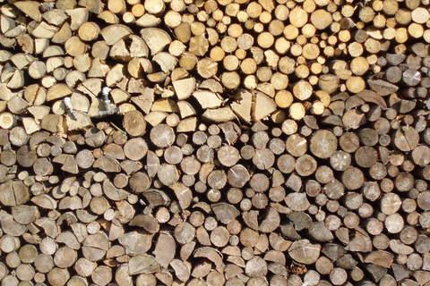 FOTKA - Dřevo.