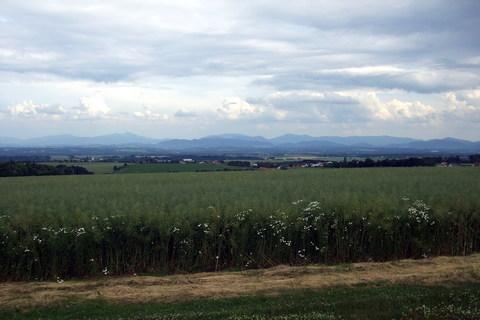 FOTKA - Pohled na Klimkovice